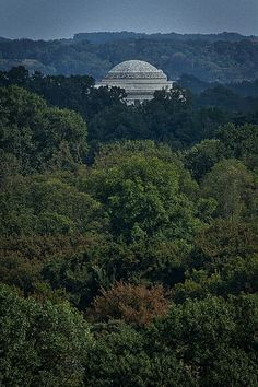 Photograph by Stuart Litoff.  The #dome of the #JeffersonMemorial above the #trees in #Washington #DC