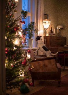 Sweden Christmas, Christmas Mood, Christmas Is Coming, Holiday Tree, Christmas Activities, Christmas Traditions, Christmas Interiors, Christmas Decorations, Holiday Decor