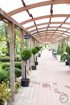 KUKKALA: Myymälässä: Viherlassila Turussa + Habitarelippuarvonnan voittaja