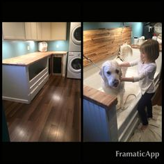 Dog wash station in laundry room