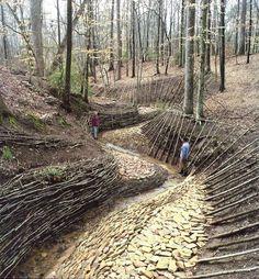 Image result for Valerio Morabito Landscape Architect