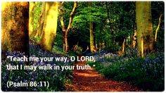 """""""Teach me your way, O LORD, that I may walk in your truth.""""  (Psalm 86:11)"""