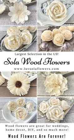 We are a small business that sells eco friendly sola wood flowers for weddings, home decor, and DIY. Wood flowers are soft and look very real. You can dye them and add scents to them. They last forever! Sola Wood Flowers, Wooden Flowers, Diy Flowers, Fabric Flowers, Paper Flowers, Wedding Flowers, Wood Crafts, Fun Crafts, Paper Crafts