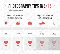 Pour l'Enseignement : En me promenant sur le net, j'ai trouvé ces quelques infographies en anglais réalisées par Monsieur Oleg Samoilov qui est photographe depuis 2006. L'Humain a conçu un site