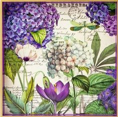 4 x Paper Napkins Botanical Hydrangea buy online in London decoupage store. Decoupage Vintage, Napkin Decoupage, Decoupage Paper, Vintage Diy, Vintage Style, Botanical Illustration, Botanical Prints, Illustration Art, Illustrations