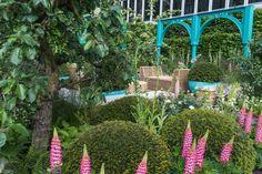 Afbeeldingsresultaat voor capco covent garden