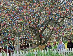 Neat Easter Celebration