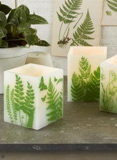 Fern lantern candles