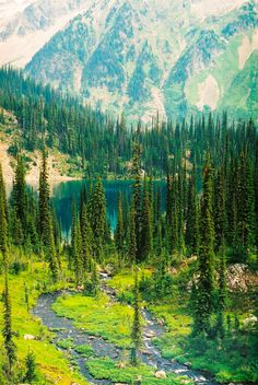 Lower Jade Lake (Mount Revelstoke National Park, BC) by Christina Smyth