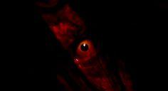 Primer teaser con actores reales de NightCry, un juego de miedo que llegará a iOS
