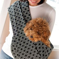 20 Smart and Stylish Pet Carriers via Brit + Co. Reversible Pet Sling with Pocket