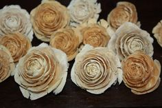 10 deodara bleeched white cedar rose pine cones by remsa on Etsy