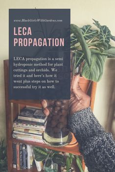 We Tried Leca Propagation With Our Houseplant | Here's What Happened – Black Girls With Gardens#black #gardens #girls #happened #heres #houseplant #leca #propagation Plant Cuttings, Propagation, Plant Magic, Inside Plants, Garden Care, Green Life, Cacti And Succulents, Growing Plants, Plant Care