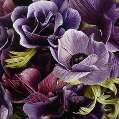 """Mia Tarney: """"Anemones"""", Oil on Canvas"""