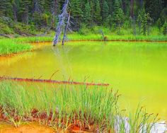 Paint Pots Hike Kootenay National Park British Columbia Canada