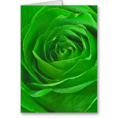 Abstract Emerald Green Rose Center Photograph Greeting Cards