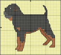 Griffon Beige Cross Stitch Patterns, Knitting Patterns, Dog Crafts, Bargello, C2c, Cavalier King Charles, Plastic Canvas Patterns, Quilts, Embroidery