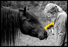 The Sunflower III by ~Rohwen on deviantART.  I love the relationship between horses and people!