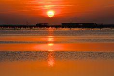 Amanecer en el Delta de l'Ebre - Sunrise at Delta de l'Ebre (Catalunya)