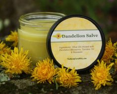 make a dandelion salve that is useful for:      sore muscles     achy & arthritic joints     rough, chapped skin