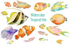 Watercolour fish clipart digital download carp, trout, tuna, sardine, pike, sea fish for fishing themed cards, invitation, bathroom decor