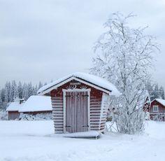 Talvimaisema photo by Timo Särkkäs-Ristiina