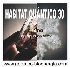"""GEO-ARCHITECTURE & ECO-BIOENERGIA ''Biologia da Construção"""": HABITAT QUÂNTICO 30 """"HADO da água ao cristal"""""""