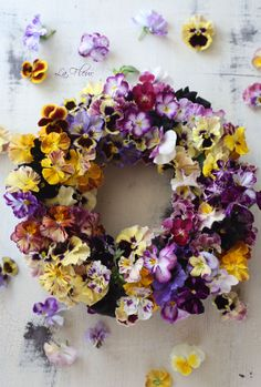One of my favourite flowers Flowers Nature, Dried Flowers, Spring Flowers, Beautiful Flowers, Corona Floral, Wreaths And Garlands, Summer Wreath, Diy Wreath, Pansies
