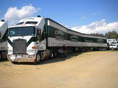 File:Canny Carrying Company B-triple road train. Big Ford Trucks, Big Rig Trucks, New Trucks, Train Truck, Road Train, Heavy Truck, Heavy Duty Trucks, Super C Rv, Truck Transport