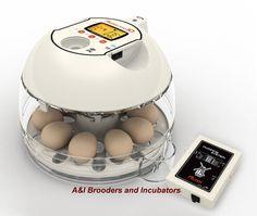 $240 RCom Pro10 Plus Automatic Egg Incubator Quail Chicken Avian DIGITAL Warranty #RcomRcom