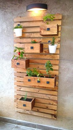 Check out these pallet wall garden ideas to arrange your plants and flowers in an alluring and decorative plan plan for your blank wall. House Plants Decor, Plant Decor, Vertical Pallet Garden, Vertical Gardens, Pallet Walls, Pallet Ideas For Walls, Pallet Garden Walls, Pallet Planters, Pallet Fence