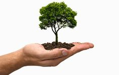 http://www.direitoambiental.adv.br/ambiental.qps/news