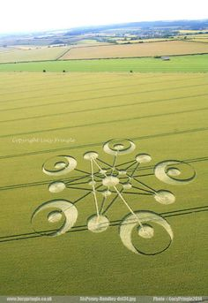 Crop Circles. Ackling Dyke, Nr Sixpenny Handley, Dorset, United Kingdom.Reported 29th June, 2014.