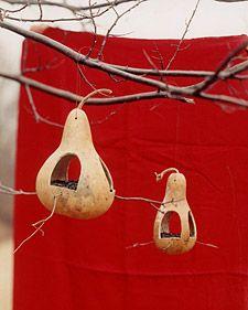 Gourd Bird Feeders