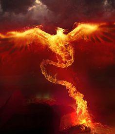 #Phoenix, #Fire, #Paintings & #Airbrushing
