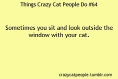 Things crazy cat people do - What more to say other than we just LOVE cool stuff!