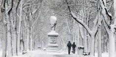 Tormenta invernal azota noreste de Estados Unidos...