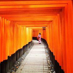 """Spotted: a maiko strolling along the Fushimi Inari Shrine in #Kyoto."" Photo courtesy of syiramahmud on Instagram."