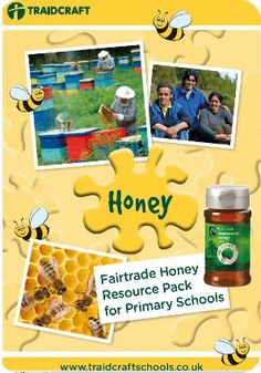 Fairtrade Honey Resource Pack for Primary Schools
