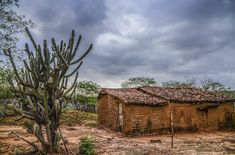 Serra Talhada - PE Paraiba, Old Images, Old West, Culture, Brazil, Cottage, Cabin, Country, House Styles