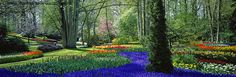 beautiful spring gardens