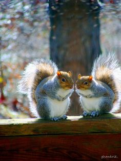 Just you and me.. by Amy Smith, via 500px