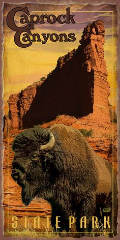 Caprock Canyons State Park Poster by Texas Poster