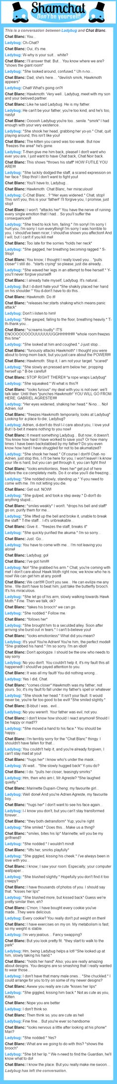 A conversation between Chat Blanc and Ladybug