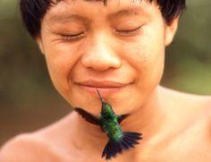 Índio com beija-flor- Rosa Gauditano brasil brazil