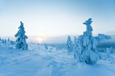 Wonderland Winter in Lapland, Finland Amazing Pics, Mount Everest, Wonderland, Lapland Finland, Mountains, Winter, Nature, Behance, Travel