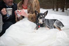 Portrait by Liz Bradley of elizabeth photography. http://elizabethandjane.ca  Blogged here: http://elizabethandjane.ca/2013/03/ottawa-winter-wedding-heather-paul/