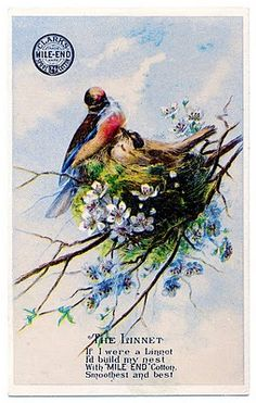 Pretty Birds with Nest Image - Thread Trade Card - The Graphics Fairy