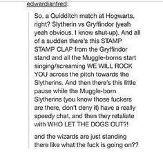I would kill to be at that Quidditch match