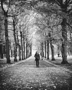 Humlegården Stockholm oktober 2017  #wwpwsthlmc #wwpw2017  #stockholm #stockholmmoments #mysthlm #ig_sweden #igersstockholm #travel #olympicepl8 #wu_sweden #visitstockholm #visitsweden #the_bestbw #ig_shotz_bw #bnw_demand #bnw #bnw_sweden #bnw_life #masters_in_bnw #original_bnw #mono_styles #bnwsouls #jj_blackwhite #foto_blackwhite #bnw_fanatics
